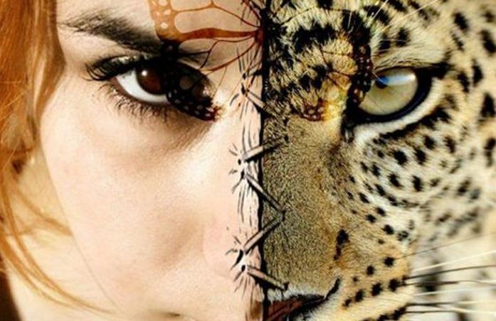 Jakim zwierzęciem będziesz w swoim następnym wcieleniu?