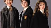 Ile wiesz o Harry'm?