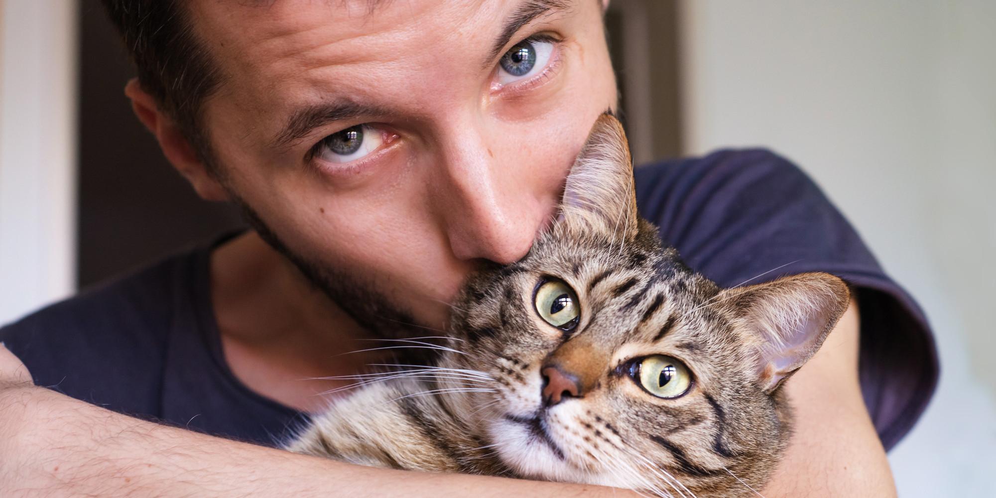 Czy nadajesz się na właściciela kota?