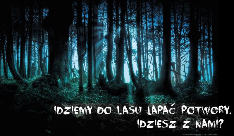POLOWANIE: Idziemy do lasu, sprawdź jakiego potwora złapiesz.