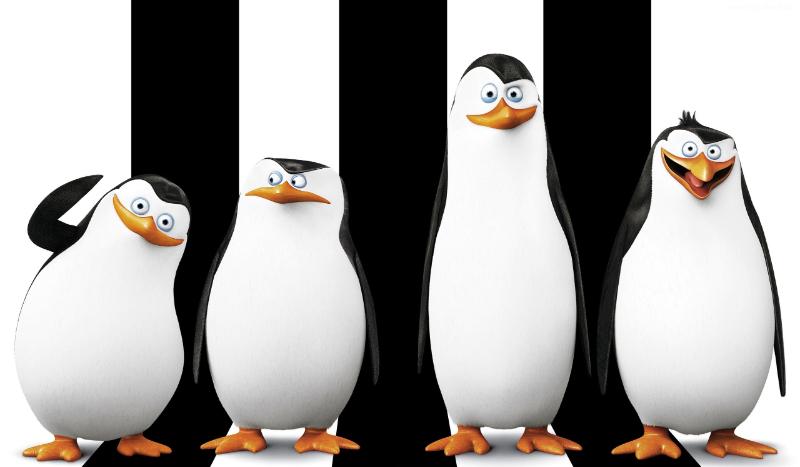 Jakim pingwinem jesteś?