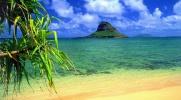 Czy uda Ci się przeżyć na wyspie?