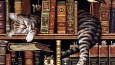 Chcesz sprawdzić swoją wiedze na temat książek?