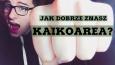 Jak dobrze znasz KaikoArea?