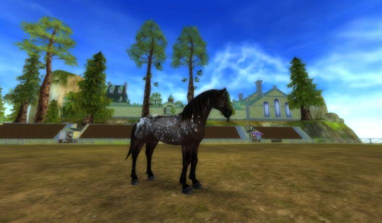 Jaki koń w Star Stable Online do Ciebie pasuje?