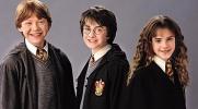 Którym bohaterem z serii Harry Potter jesteś?