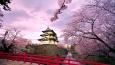 Czy jesteś fanem Japonii i wszystkiego co z nią związane?