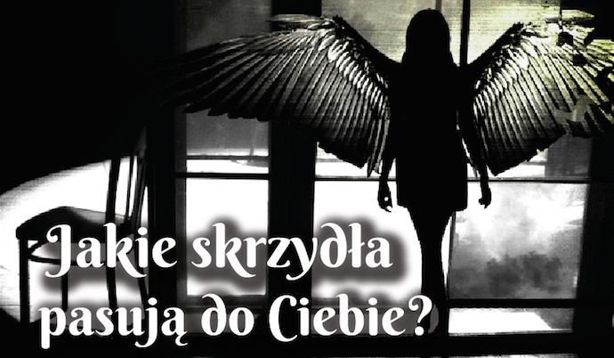 Jakie skrzydła pasują do Ciebie?