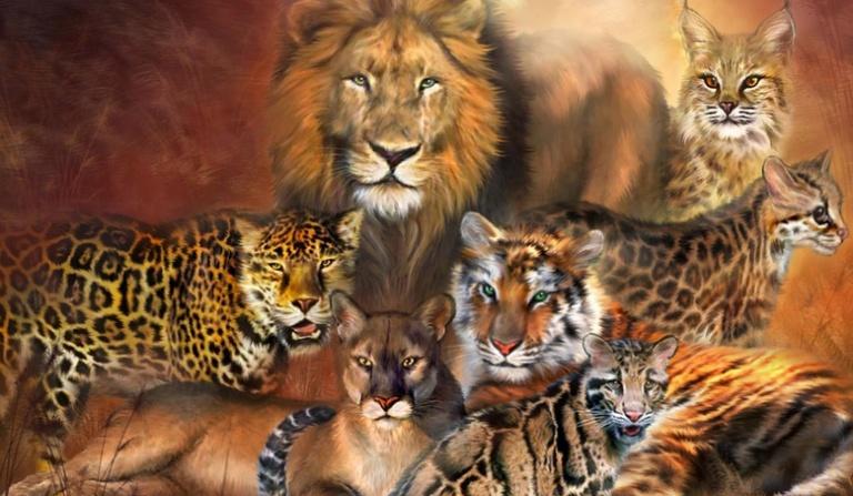 Jak dobrze znasz się na dzikich kotach?