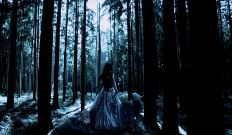 Czy przeżyjesz sam w lesie przez kilka dni?
