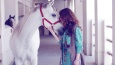 W ilu procentach kochasz konie?