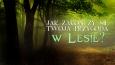 Jak zakończy się Twoja przygoda w lesie?