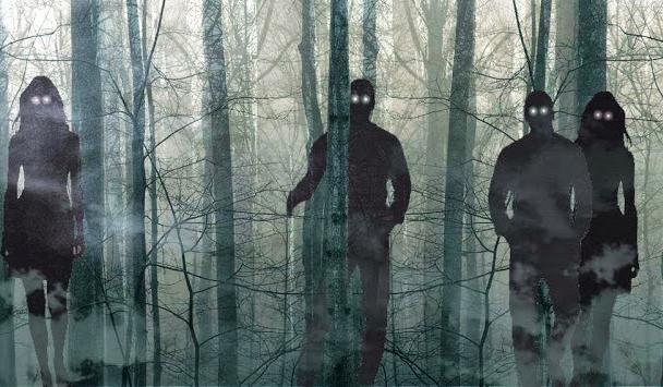 Co spotka Cię w strasznym lesie?