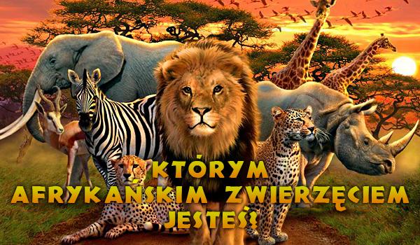 Jakim afrykańskim zwierzęciem jesteś?