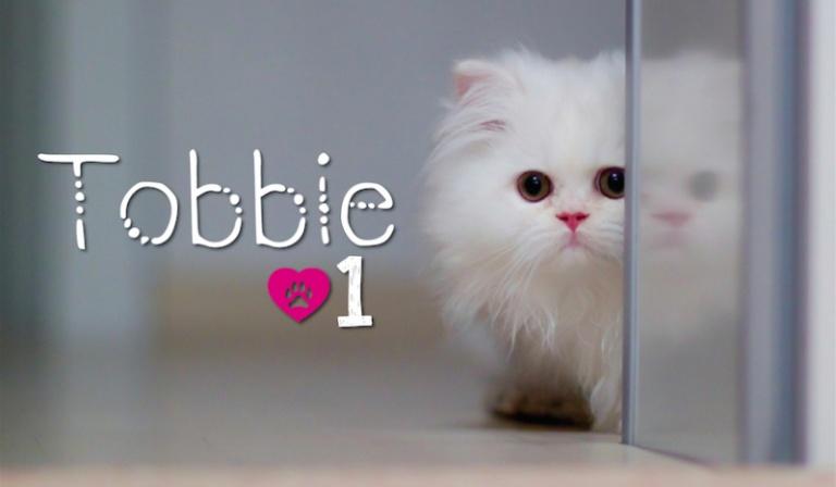 Tobbie #1