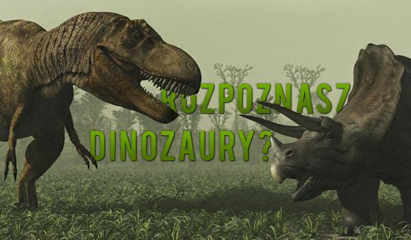 Czy rozpoznasz dinozaury?