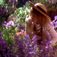 Tajemniczy Ogród Samequizy