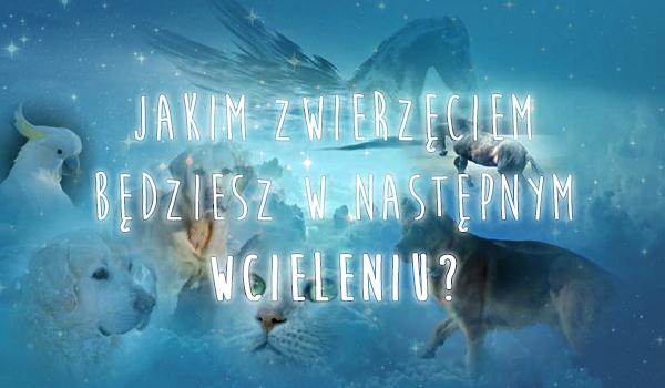 Jakim zwierzęciem będziesz w następnym wcieleniu?