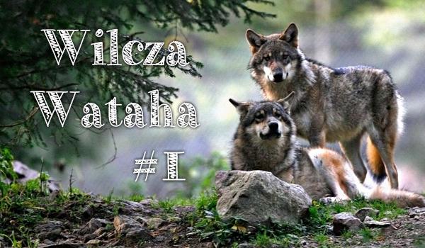 Wilcza wataha #1.