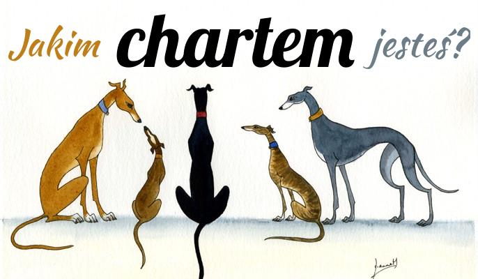 Jakim chartem jesteś?