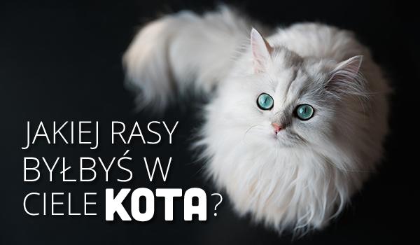 Jakiej rasy byłbyś w ciele kota?