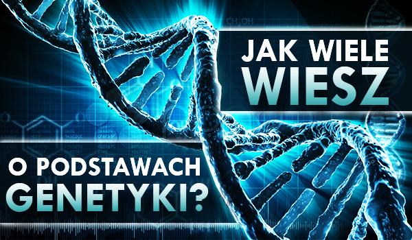 Jak wiele wiesz o podstawach genetyki?