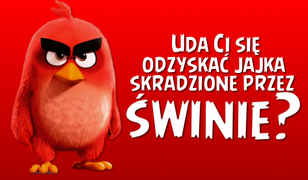 Czy uda Ci się odzyskać jajka skradzione przez świnie z Angry Birds?