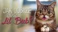 Jak dobrze znasz Lil Bub?