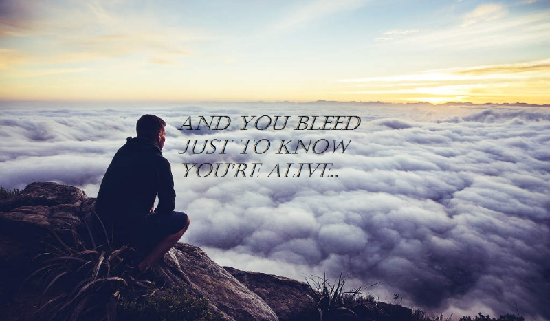 you bleed just to know you re alive: