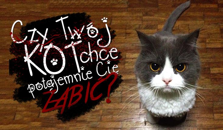 Czy Twój kot chce Cię zabić?
