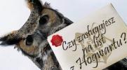Czy zasługujesz na list z Hogwartu?