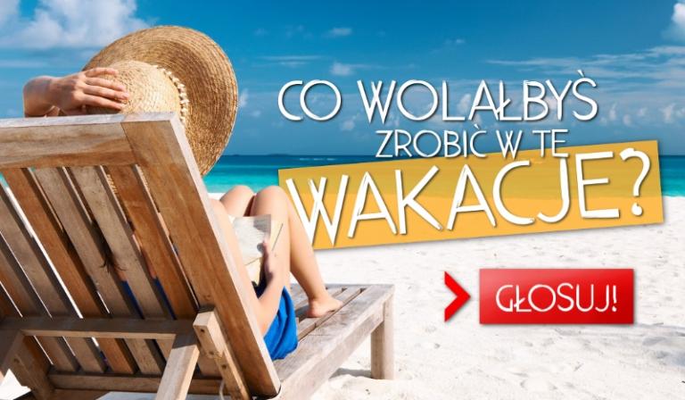 Co wolałbyś zrobić w te wakacje?