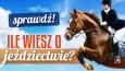 Ile wiesz o jeździectwie?