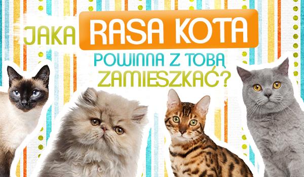 Jaka rasa kota powinna z Tobą zamieszkać?