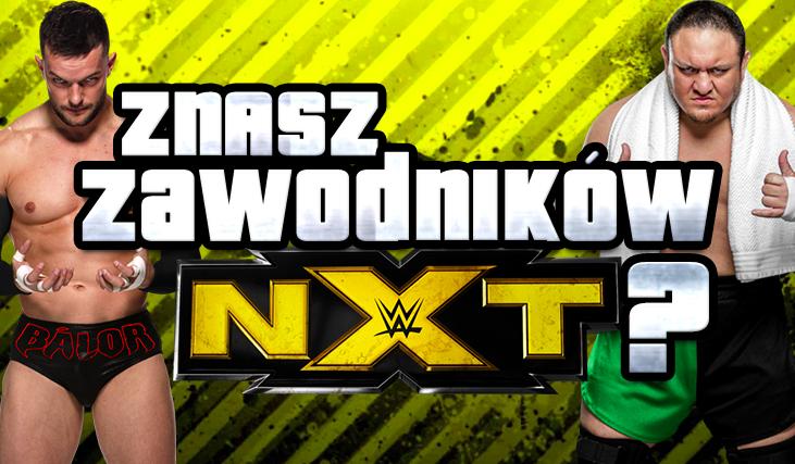 Czy rozpoznasz wszystkich zawodników NXT?