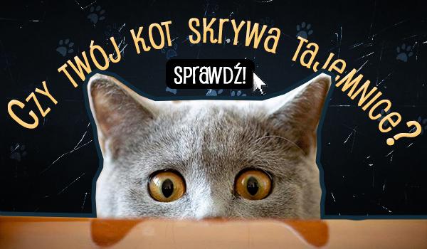 Czy Twój kot skrywa tajemnicę?