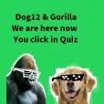 Dog12Gorilla