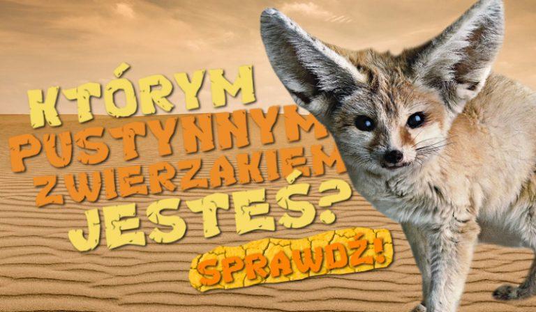 Którym pustynnym zwierzakiem jesteś?