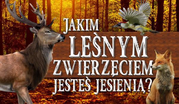 Jakim leśnym zwierzęciem jesteś jesienią?