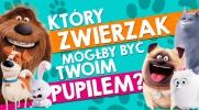 """Który zwierzak z """"Sekretne życie zwierzaków domowych"""" mógłby być Twoim pupilem?"""