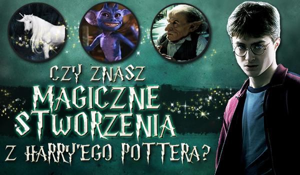 """Czy znasz magiczne stworzenia z """"Harry'ego Pottera""""?"""