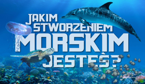 Jakim stworzeniem morskim jesteś?