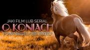 Jaki film lub serial o koniach powinieneś obejrzeć?