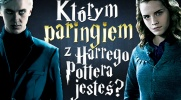 """Którym paringiem z """"Harry'ego Pottera"""" jesteś?"""