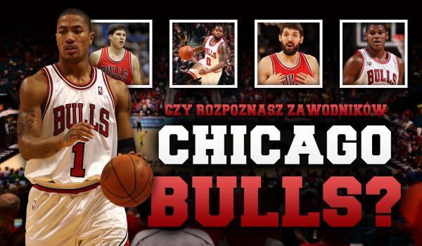 Czy rozpoznasz zawodników NBA z drużyny Chicago Bulls?
