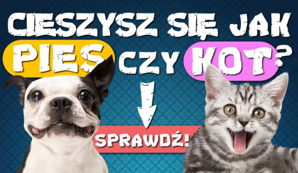 Cieszysz się jak pies czy jak kot?