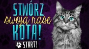 Kreator Kotów - Stwórz swoją rasę kota!
