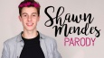 SHAWN MENDES PARODY