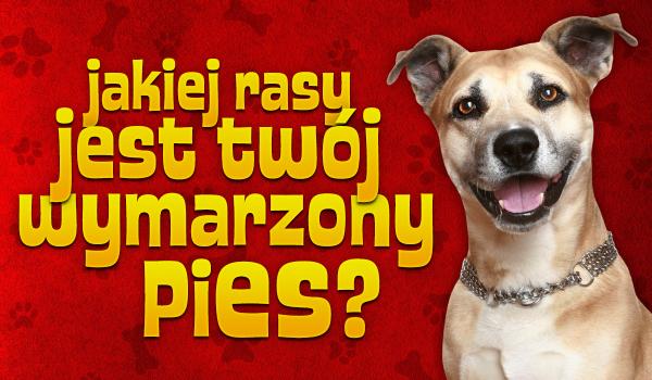 Jakiej rasy jest Twój wymarzony pies?