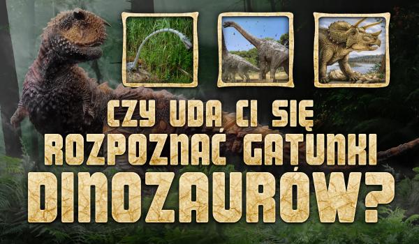 Czy uda Ci się rozpoznać gatunki dinozaurów?